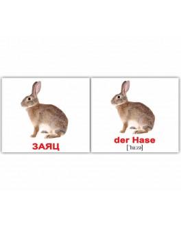 Карточки Домана мини Дикие животные немецко-русские Вундеркинд с пеленок - WK 2100064094125