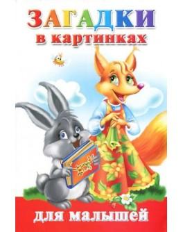 Дмитриева В. Загадки в картинках для малышей