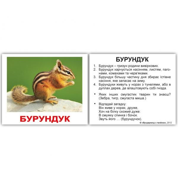 карточки домана дикі тварини міні