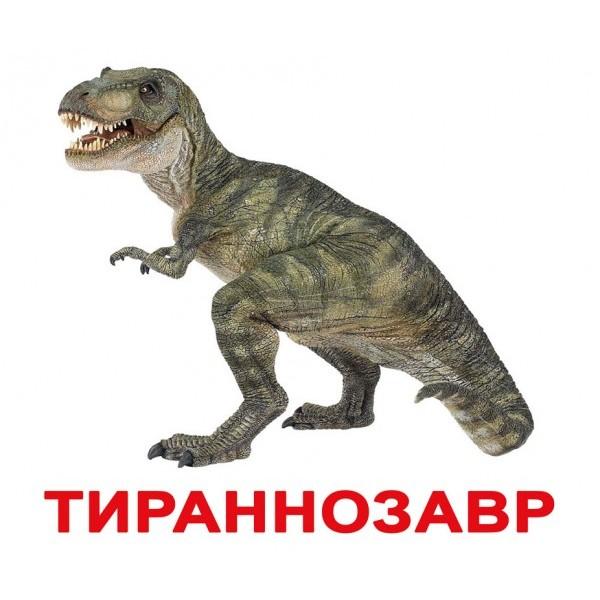 карточки домана динозавры, Вундеркинд с пелёнок