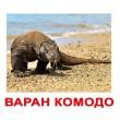 Карточки Домана Экзотический животные русский язык Вундеркинд с пелёнок - WK 2100064096389