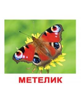 Карточки Домана Насекомые укр. язык Вундеркинд с пеленок - WK 2100064096525