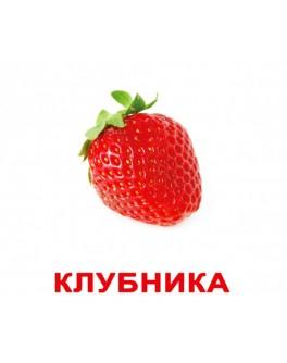 Карточки Домана Ягоды русский язык Вундеркинд с пелёнок