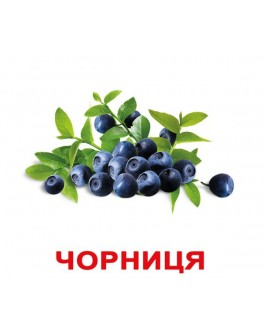 Карточки Домана Ягоды укр. язык Вундеркинд с пеленок - WK 2100064097041