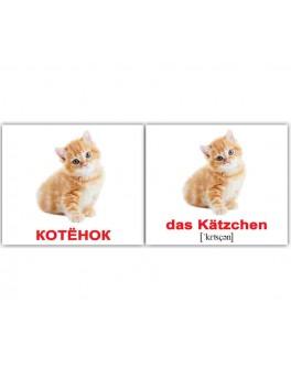 Haustiere-Домашние животные Немецко-русские карточки Домана Мини