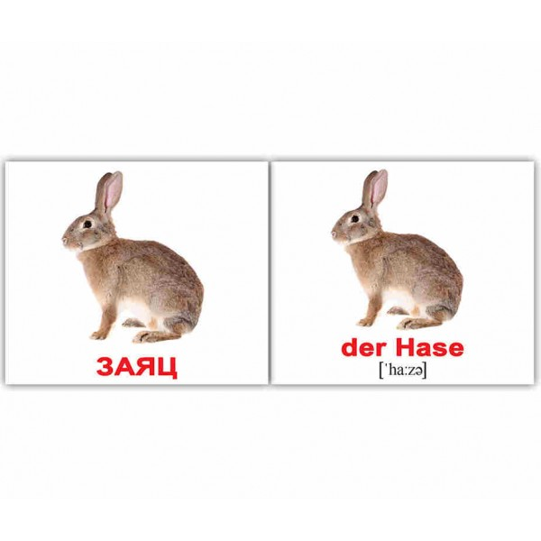 Карточки Домана мини Дикие животные немецко-русские Вундеркинд с пеленок