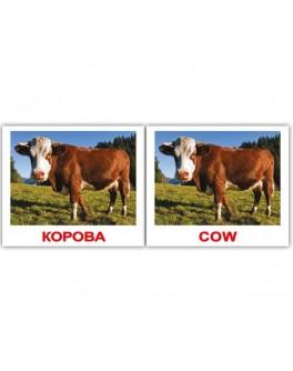 Domestic animals/Домашние животные. Карточки Домана. Мини размер