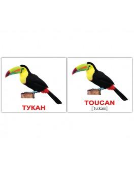 Birds-Птицы Карточки Домана. Мини размер