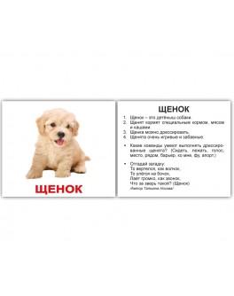 Карточки Домана мини Домашние животные и детёныши русский язык Вундеркинд с пеленок - WK 2100064096723