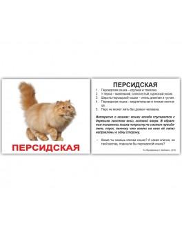 Карточки Домана мини Породы кошек русский язык Вундеркинд с пеленок - WK 2100064379512