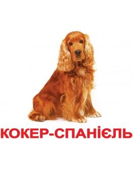 Карточки Домана Породы собак укр. язык Вундеркинд с пеленок