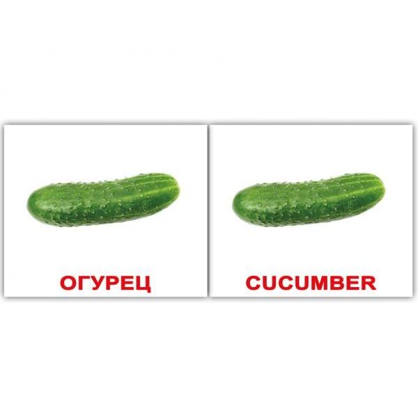 двуязычные карточки домана овощи мини Вундеркинд с пелёнок