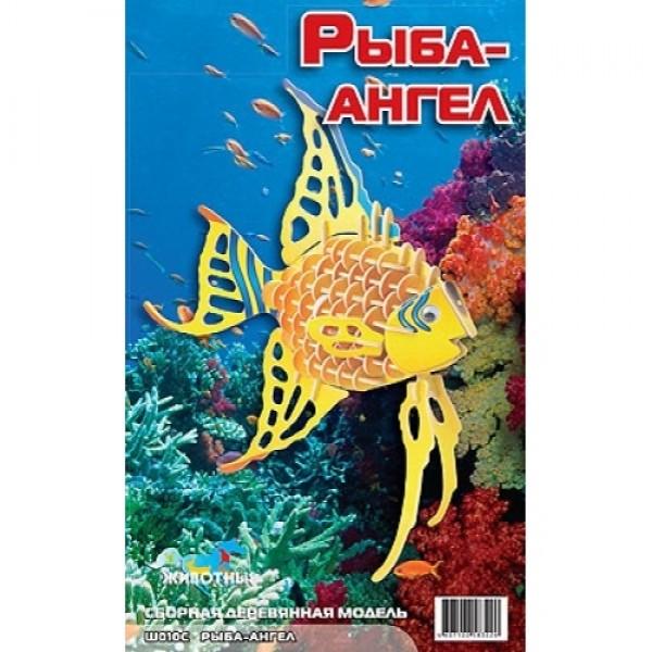 пазл из фанеры рыба-ангел мди Н010