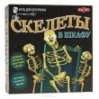 Скелеты в шкафу Настольная игра - BVL 40646