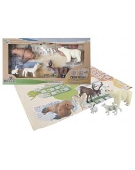 Обучающий игровой набор с QR-картой Wenno Животные Арктики (WAC1701)