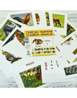 Картки міні Домашні тварини 110х110 мм - RK 65945