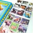 Тварини, розвиваюча гра-суперлото  - eplus M7346365