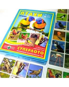 Птицы, развивающая игра-суперлото (укр. язык)
