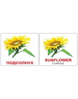 Картки Домана міні Квіти англо-російські Вундеркінд з пелюшок - WK 2100063476328