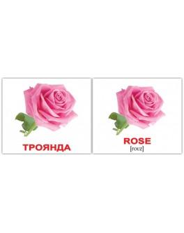 Картки Домана міні Квіти англо-українські Вундеркінд з пелюшок - WK 2100063276324