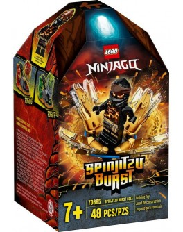 Конструктор LEGO NINJAGO Турбо спін-джитсу Коул (70685)